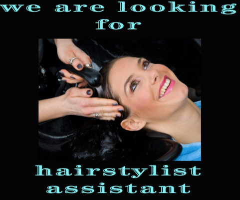 Hairstylist assistant needed
